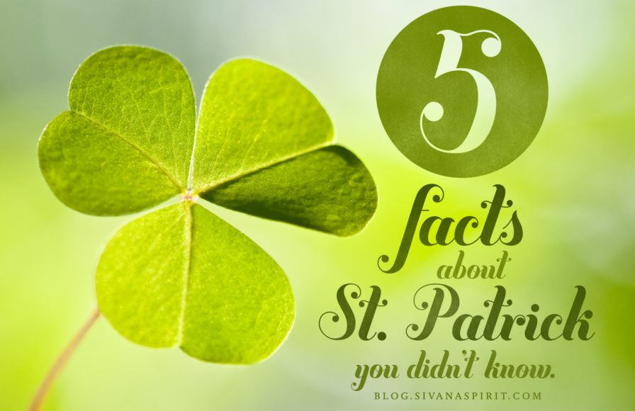 5 Facts About St. Patrick You Didn't Know