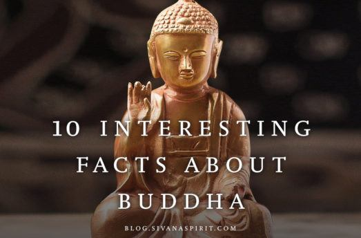 10 Interesting Facts About Buddha