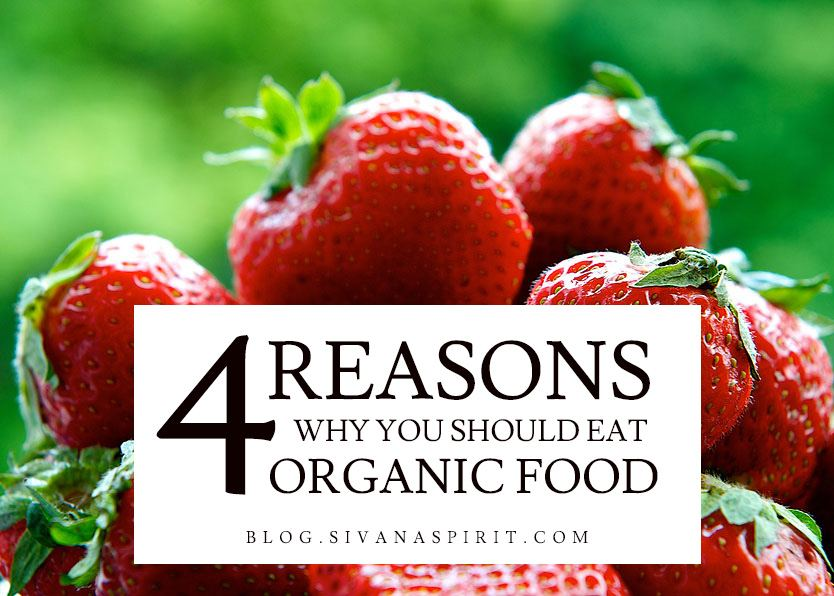 4 Straight-Forward Reasons You Should Eat Organic Food