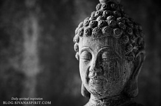 Buddha's Philosophy On Sex