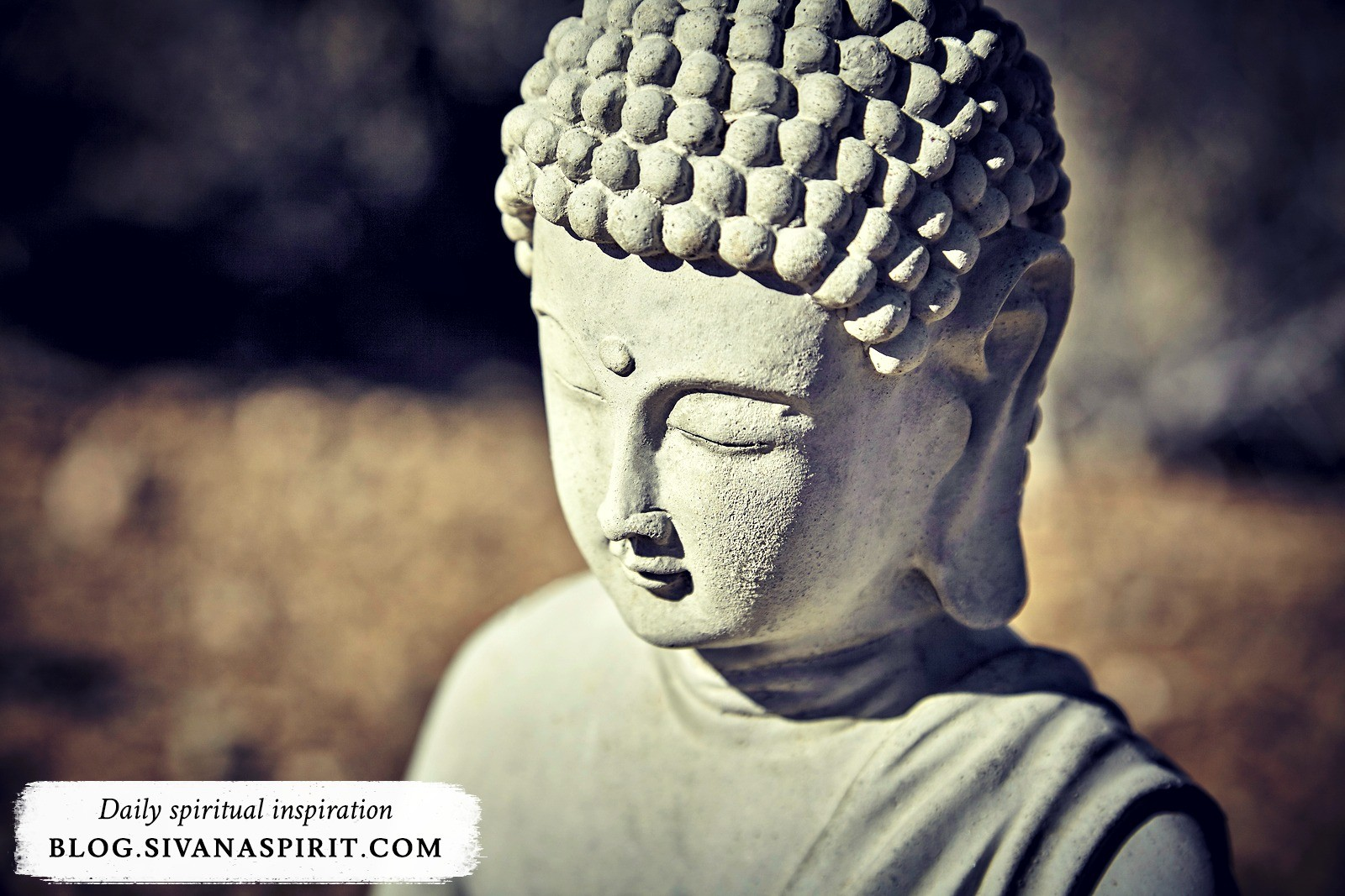 5 Crucial Pieces Of Self Love Advice From The Buddha
