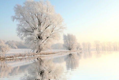 4 Powerful Rituals To Honor Winter Solstice