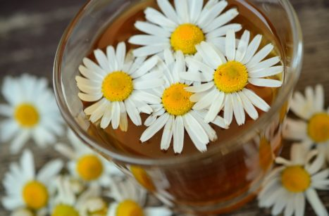Herbal Basics--Learn How To Make Your Own Home Herbal Medicine Chest