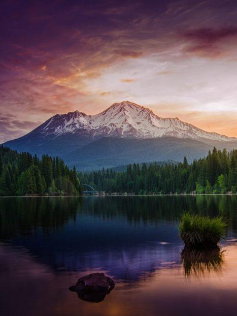 Mt. Shasta Women's Spiritual Retreat – Liberating the Goddess