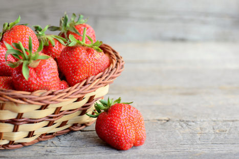 The Importance Of Trace Elements And Antioxidants Play In Fertility