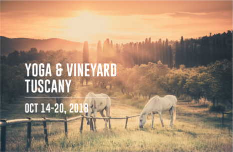 Yoga & Vineyard Tuscany: Women's Yoga And Wine Tasting Retreat