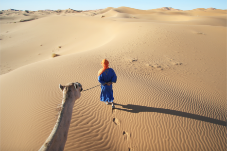 7 Day Morocco Expedition