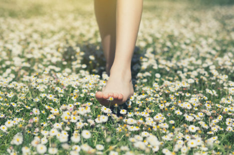 Healing Trauma Through Grounding