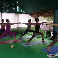 300 Hour Yoga Teacher Training Course In Kerala