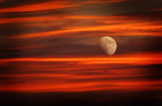 June 13 - NEW MOON - Dark Hunting - Mrigashira - Vedic Astrology