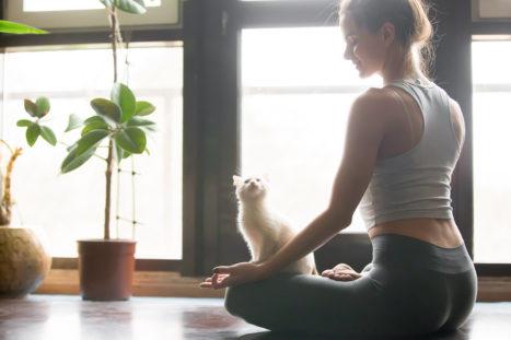 7 Ways To Zen Your Home