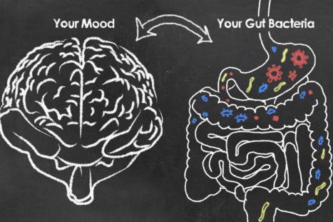 Why Gut Health = Brain Health With Teri Mosey