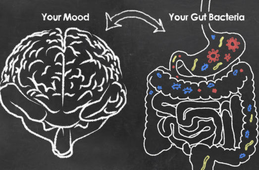 Why Gut Health = Brain Health With Teri Mosey
