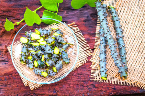17 Proven Health Benefits Of Tinospora Cordifolia