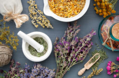 Top 5 Herbs For Health And Wellness