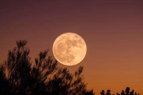 Sep 24th: FULL MOON + Equinox Balance (Uttara Bhadrapada) Vedic Astrology