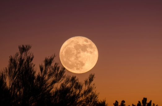 Sep 24th: FULL MOON + Equinox Balance (Uttara Bhadrapada) Vedic Astrology