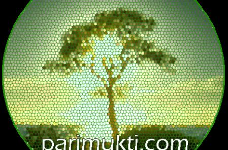 Parimukti Yoga And Meditation