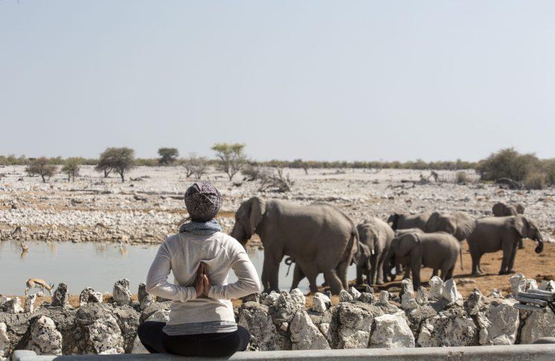10-Day Yoga Safari Adventure – Namibia – Africa