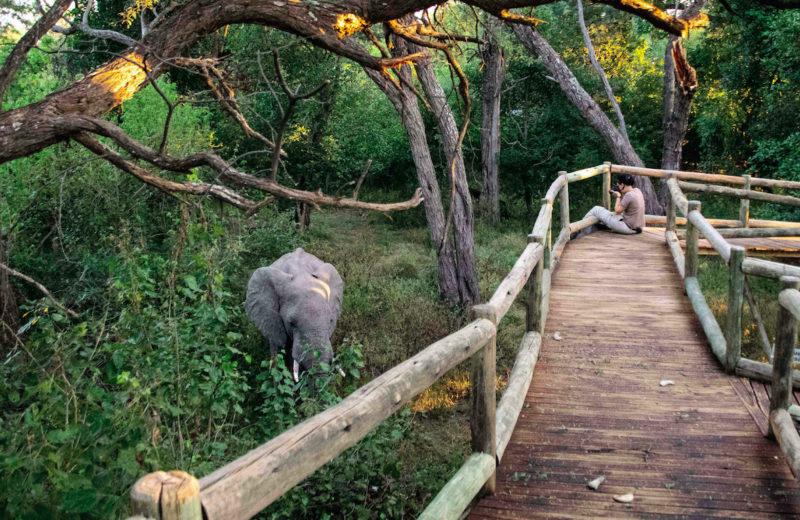 10-Day Yoga Wildlife Retreat – Namibia – AFRICA