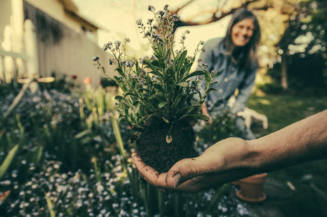 Finding Spirituality In The Soil