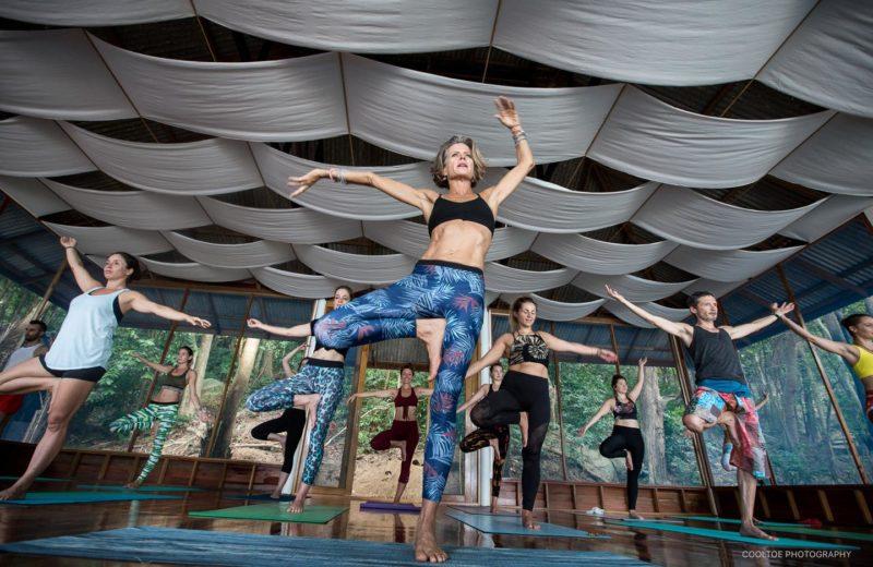 8 Day Natural State Of Being- Ayurveda & Yoga Retreat On Koh Phangan