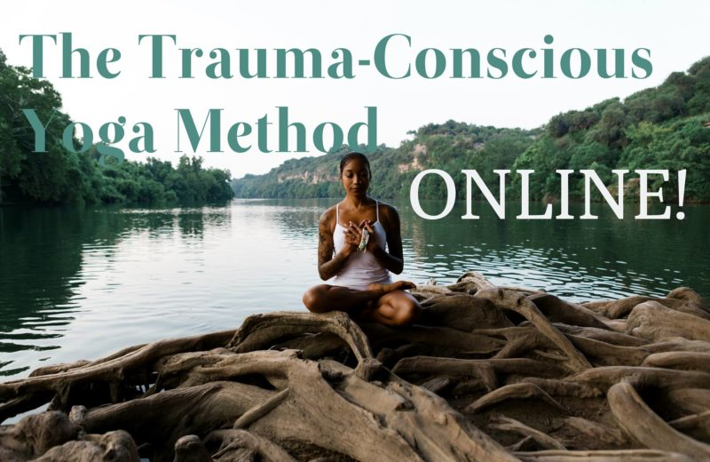The Trauma-Conscious Yoga Method Teacher Training, Online!