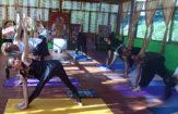 300 Hour Yoga Teacher Training In Rishikesh (February)