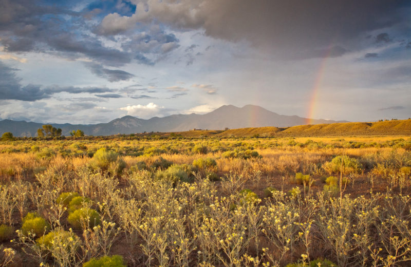 4 Day Healing Retreat In New Mexico USA