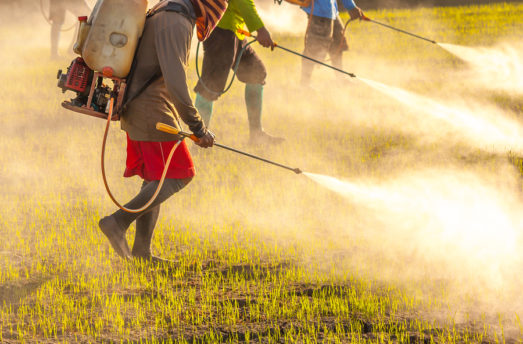 Why Food Sources Matter: Pesticides & Public Health