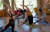 Lakshmi Rising School For Yoga & Wellness – 200hr Yoga Teacher Training In Italy